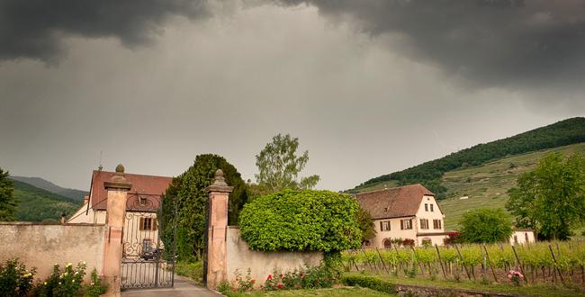 lalsace viticole pleure sa grande dame du vin disparue - Domaine Viticole Mariage Alsace